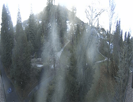 Badenweiler – Hotel am Park Webcam Live