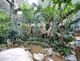Karlsruhe: Zoologischen Stadtgarten – Exotenhaus webcam Live
