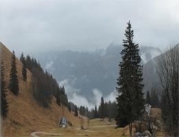 Schleching – WuhrsteinAlm (Blick nach Nordosten) webcam Live