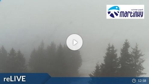 Martin – Winter Park Martinky Webcam Live