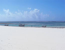 Diani Beach – Strandpanorama Webcam Live