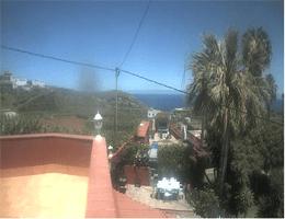 Icod de los Vinos – Finca La Gaviota Webcam Live