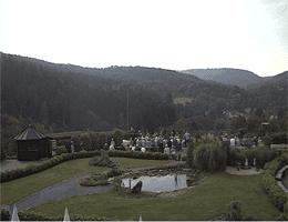 Detmold – Adlerwarte Berlebeck Webcam Live