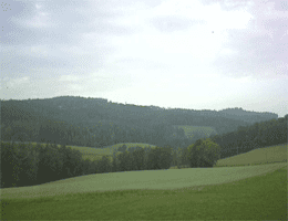 Eggerszell – Vorderen Bayerischen Wald Webcam Live