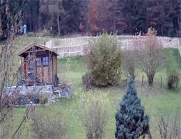 Philippsreut – Wiese zum Waldrand Webcam Live