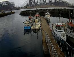 Þingeyri – Marina Webcam Live