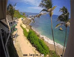 Saint Joseph – Tent Bay Webcam Live
