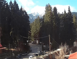 Elati Trikala Webcam Live