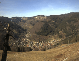 Todtnau – Panoramablick Webcam Live