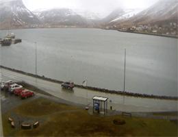 Isafjordur – Pollurinn Webcam Live