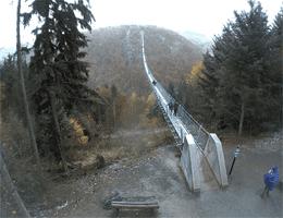 Mörsdorf – Geierlay Hängeseilbrücke Webcam Live