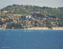 Crveni Vrh Piran Bay Webcam Live