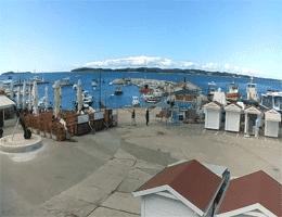 Fažana Hafen Webcam Live