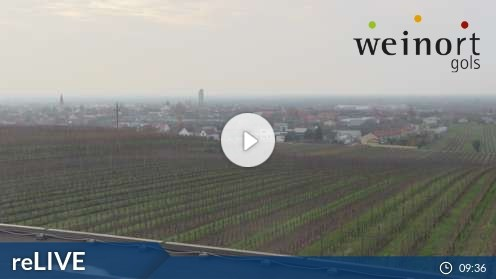 Gols – Landschaftsblick Webcam Live