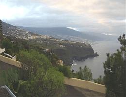 La Matanza de Acentejo – Faisán Azul Webcam Live