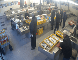 Dubrovnik – Fish Market Webcam Live