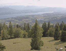 Gingins – La Barillette Webcam Live