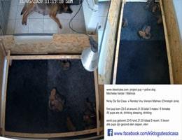Oudsbergen De Sol Casa Webcam Live