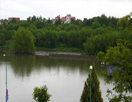 Świdnica Zalew Witoszówka Webcam Live
