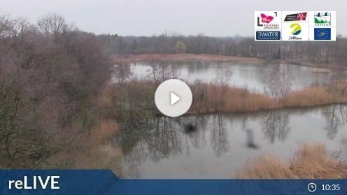 Zonhoven De Wijers webcam Live