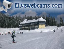 Hotel Center Pokljuka Webcam Live