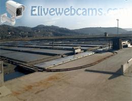 Naturpark der Salinen Webcam Live