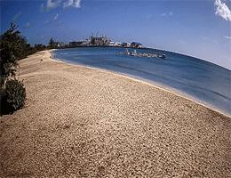 Brandons Beach Webcam Live