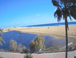 La Charca de Maspalomas Webcam Live